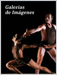 Galer�as de im�genes